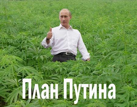 Госдеп никак не убедится в отводе войск России от Украины - Цензор.НЕТ 4204