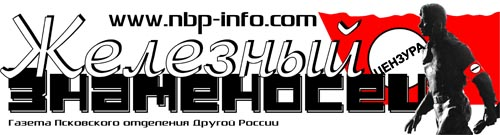 Железный знаменосец. Газета Псковского отделения Другой России